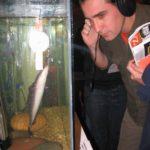 escuchando al pez