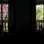 jardin de invierno 18
